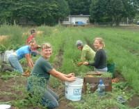 WOW Washington Organic Week